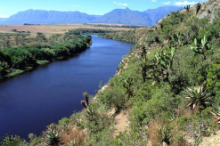 Breede River near Swellendam